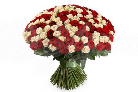 Букет из 201 розы