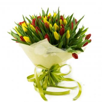 Букет из 75 тюльпанов в упаковке